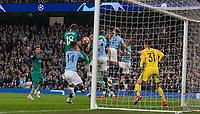 Manchester City v Tottenham Hotspur - Champions League QF 2nd leg - 17.04.2019