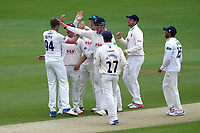 Matt Quinn of Essex is congratulated by his team mates after taking the wicket of Rilee Rossouw during Essex CCC vs Hampshire CCC, Specsavers County Championship Division 1 Cricket at The Cloudfm County Ground on 20th May 2017