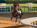 April 27, 2021: Medina Spirit, trained by trainer Bob Baffert, exercises in preparation for the Kentucky Derby at Churchill Downs on April 27, 2021 in Louisville, Kentucky. Scott Serio/Eclipse Sportswire/CSM