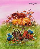 GIORDANO, CHRISTMAS ANIMALS, WEIHNACHTEN TIERE, NAVIDAD ANIMALES, paintings+++++,USGI2071,#XA#
