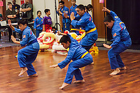 A martial arts demonstration was presented by the Vovinam Viet-Do-Dao of San Jose during a Lunar New Year celebration at the San Leandro Main Library.