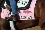 April 21, 2014  Got Lucky and rider Amy Lyn Mullen jog at Churchill Downs.  She is trained by Todd Pletcher, owned by Hill 'n' Dale Equine Holdings, Inc. and Philip J. Steinberg, and finished second in the Gazelle Stakes at Aqueduct.