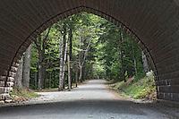 Carriage Road Through Eagle Lake Bridge  #A76