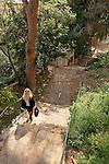 Israel, Carmel. The Stairs Path in Haifa