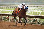 DEL MAR,CA-AUGUST 26: Battle of Midway,ridden by Fravien Prat, wins the Shared Belief Stakes at Del Mar Race Track on August 26,2017 in Del Mar,California (Photo by Kaz Ishida/Eclipse Sportswire/Getty Images)