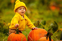 Pumpkin picking (Mooresville, NC)