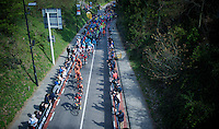 bunch up the Cauberg<br /> <br /> 50th Amstel Gold Race 2015