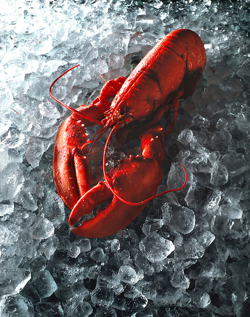 Whole lobster on crushed ice