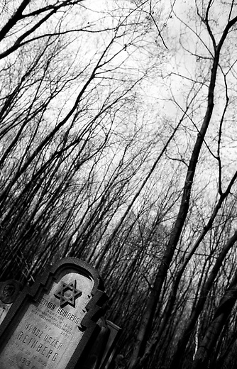 POLAND, 05.2002, Warsaw..The vast Jewish Cemetery is the most dramatic remnant of the Jewish legacy. Founded in 1806, it still has over 100,000 gravestones and is the largest collection of its kind in Europe. .POLOGNE, Varsovie, Mai 2002..Le vaste cimetière juif de Varsovie est le vestige le plus spectaculaire de l'héritage juif polonais. Fondé en 1806, il comprend plus de 100.000 pierres tombales et en fait un des plus grands cimetières juifs en Europe.. © Bruno Cogez