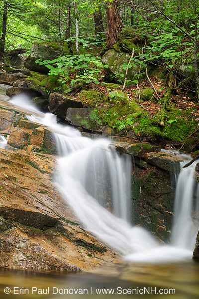 Small cascade on Louisville Brook, near Attitash Trail, in Bartlett, New Hampshire USA during the summer months.