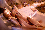 Fishes from the Mediterranean Sea sold in the harbor of Camogli.