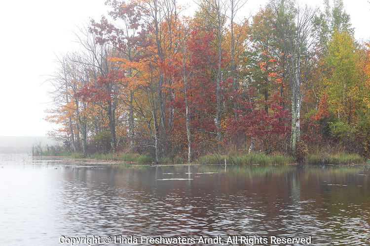 A misty autumn morning on a wilderness lake in northern Wisconsin.