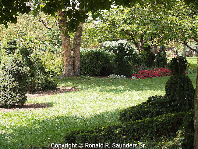 """A re-creation in sculpted shrubbery by French artist Georges Seurat's famous painting, """"A Sunday Afternoon on the Ile De La Grande Jatte.""""<br />  The topiary garden begun in 1989 by the Columbus Recreation and Parks Department,is a recreation in sculpted shrubbery of French artist Georges Seurat's famous painting, """"A Sunday Afternoon on the Ile de Grande Jatte"""" <br /> (1884-6).<br />  The topiary project was conceived, designed and executed by Columbus sculptor James T. Mason<br /> « less"""