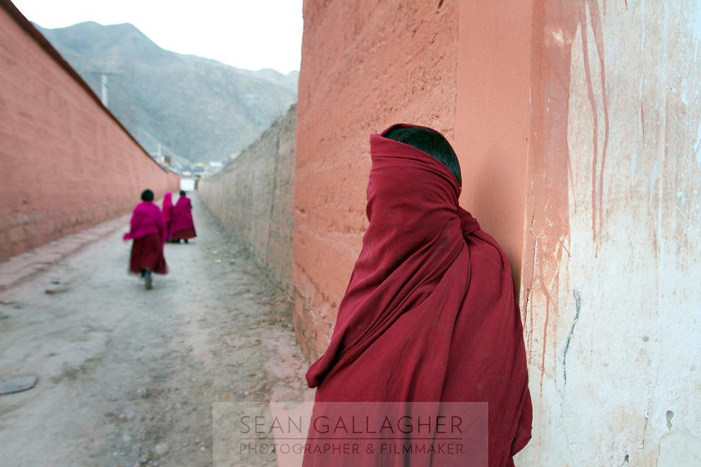 Young Tibetan monks at Labrang (Chinese Name - Xiahe) Monastery on the Qinghai-Tibetan Plateau. China.