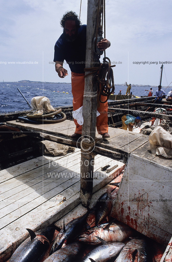 ITALY, Sicily, Egedian island Favignana, La Mattanza, traditional fishing of bluefin Tuna fish, rais (chief) Gioacchino Cataldo counting the catch