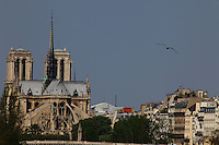 Paris Right Bank: A view from faraway of the back of the church of Notre Dame in Paris, with the façades of some typical buildings and a seagull.<br /> <br /> You can download this file for (E&PU) only, but you can find in the collection the same one available instead for (Adv).