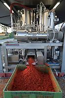 ITALY, Parma, tomato canning company Mutti s.p.a., founded 1899, fresh havested plum tomatoes are processed and conserved as passata direct on the field at the Mutti Insta factory, a mobile conserving unit / ITALIEN, Parma, Basilicanova,Tomatenkonservenhersteller Firma Mutti spa, die frisch geernteten Flaschentomaten werden direkt auf dem Feld in der Insta Factory, einer mobilen Konservierungsanlage, zu Passata verarbeitet, Reste der Verarbeitung die auf den Feldern kompostiert werden