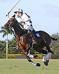WELLINGTON, FL - JANUARY 08:  #1 Grant Ganzi of Grand Champions Polo Club, takes the ball down the field against Coca Cola during the early rounds of the Joe Barry Memorial Cup, at the International Polo Club, Palm Beach on January 03, 2017 in Wellington, Florida. (Photo by Liz Lamont/Eclipse Sportswire/Getty Images)