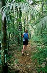 Karibik, Kleine Antillen, Grenada: Wandern im Grand Etang Nationalpark | Caribbean, Lesser Antilles, Grenada: Hiker in Rainforest at Grand Etang National Park