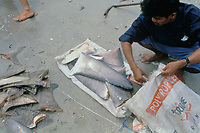 shark fins harvested for soup, the rest of the carcass is discarded