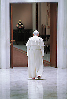 .Pope Benedict XVI during his weekly Wednesday general audience in Paul VI hall at the Vatican June 23, 2010 .. .