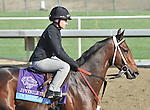 I'm Boundtoscore, trained by Troy Rankin,exercises in preparation for the upcoming Breeders Cup at Santa Anita Park on October 31, 2012.