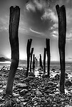Kangaroo island south australia ,Kingscote old jetty at Reeves point shot in black & white