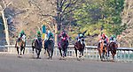 Terry Thompson pilots Native Ruler (7) to victory in the 61st King Cotton Stakes at Oaklawn Park in Hot Springs, AR.