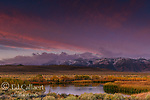 Dawn, Wetlands, Mono Basin National Forest Scenic Area, Eastern Sierra, Inyo National Forest, California
