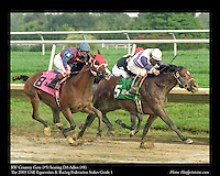 As seen in the Arabian Horse Galleries exhibit at The Kentucky Horse Park<br /> <br /> RW Country Gent (#5) beating DA Adios (#8) .The UAE Equestrian & Racing Federation Stakes Grade 1