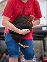 04/08/19<br /> <br /> Last year's champion shows-off his hen before the race. <br /> <br /> Hundreds of spectators watch as competitors race their hens at the World Championship Hen Racing on a purpose-built track outside the Barley Mow pub in Bonsall, in the Derbyshire Peak District.<br />  <br /> All Rights Reserved, F Stop Press Ltd +44 (0)7765 242650 www.fstoppress.com rod@fstoppress.com
