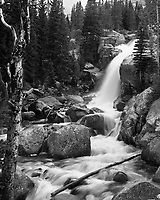 One of my favorite hikes in Rocky Mountain Nation Park is up to The Loch or Mills Lake.  Tumbling waters of Glacier Creek sits alongside the trail most of the way, providing stimulating sounds, even when the creek is obscured by the trees or rock.  One of many spots to take a break is at Alberta Falls.  <br />