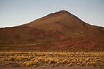 Dry puna grassland, Abra Granada, Andes, northwestern Argentina