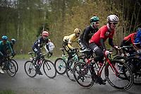 Bjorg Lambrecht (BEL/Lotto-Soudal) &Davide FORMOLO (ITA/BORA-Hansgrohe) up the Côte du Rosier<br /> <br /> 105th Liège-Bastogne-Liège 2019 (1.UWT)<br /> One day race from Liège to Liège (256km)<br /> <br /> ©kramon