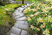 Japanese Garden with path. Portland. Oregon