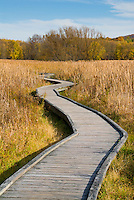 Appalachian Trail, boardwalk, Sussex County, New Jersey in autumn fall, pathway walkway, wooden, inspirational journey