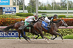 HALLANDALE BEACH, FL - JUNE 30:  #3 Good Good (KY) with jockey Tyler Gaffalione up and trained by Todd Fletcher comes from behind to take the lead and break his maiden at Gulfstream Park on June 30, 2018 in Hallandale Beach, Florida. (Photo by Liz Lamont/Eclipse Sportswire/Getty Images)