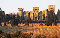 The vineyard with syrah vines and the chateau des fines roches, Chateauneuf-du-Pape, Vaucluse, Rhone, Provence, France