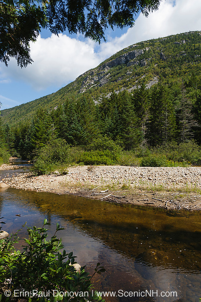 Zealand Notch - Whitewall Mountain with Whitewall Brook in the foreground during the summer months in the White Mountains, New Hampshire USA. This area was part the Zealand Valley Railroad, which was a logging railroad in operation from 1886-1897.