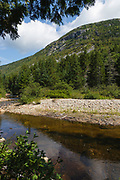 Zealand Notch - Whitewall Mountain with Whitewall Brook in the foreground during the summer months in the White Mountains, New Hampshire USA. This area was part the Zealand Valley Railroad, which was a logging railroad in operation from 1884-1897.