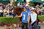 DEL MAR, CA  JULY 27: #3 Cistron in the paddock before the Bing Crosby Stakes (Grade l) a Breeders' Cup Win and You're In Sprint Division, on July 27, 2019 at Del Mar Thoroughbred Club in Del Mar, CA. (Photo by Casey Phillips/Eclipse Sportswire/CSM)