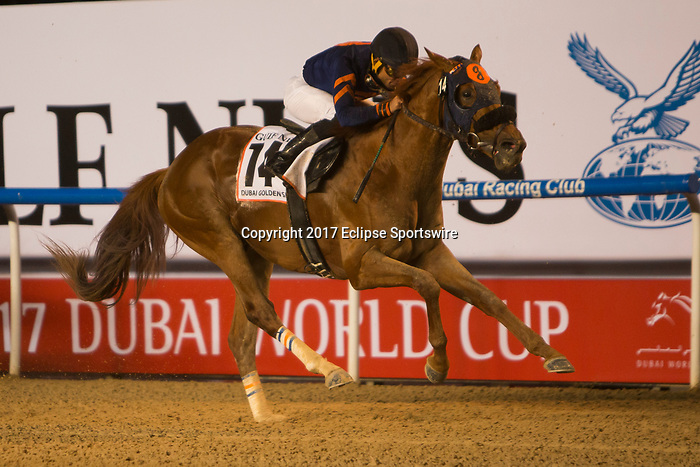 DUBAI,UNITED ARAB EMIRATES-MARCH 25: Mind Your BiscuitsJoel Rosario,ridden by ,wins the Dubai Golden Shaheen at Meydan Racecourse on March 25,2017 in Dubai,United Arab Emirates (Photo by Kaz Ishida/Eclipse Sportswire/Getty Images)