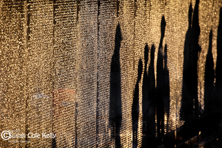 Shades pass the Vietnam Veterans Memorial at sunrise. Washington, DC, USA