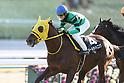 Horse racing in Kyoto