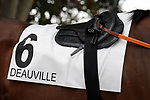 August 15, 2021, Deauville (France) - Saddle cloth for #6 and saddle of Jockey Fabrice Veron for races in Deauville at the Deauville Racecourse. [Copyright (c) Sandra Scherning/Eclipse Sportswire)]