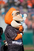 San Jose Giants mascot Gigante during the National Anthem before a California League game against the Lancaster JetHawks at San Jose Municipal Stadium on May 12, 2018 in San Jose, California. Lancaster defeated San Jose 7-6. (Zachary Lucy/Four Seam Images)