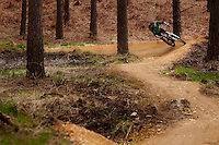 Ben riding blue trail ;  Swinley Forest ,  opening of the new trails  , May  2013.      pic copyright Steve Behr / Stockfile