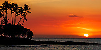 Colorful sunset with sun globe above the Pacific Ocean, with palm tree forest silhouettes and a man standing on rocks, on the Big Island of Hawaii