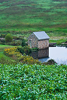 Rustic springhouse and pond, Pennsylvania, USA
