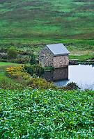 Rustic springhouse and pond, Pennsylvania, USA